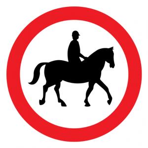 sécurité cavalier cheval