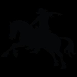 rodéo cheval protection